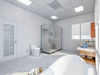 Modern apartment bathroom design, toilet and shower room in spacious room