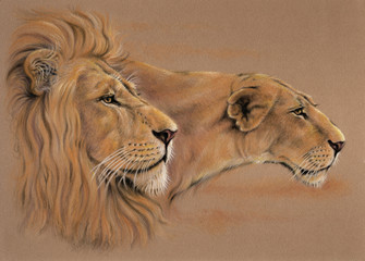 Lions pastel portrait painting
