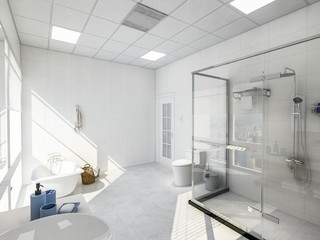Shower room and toilet in a spacious and bright bathroom