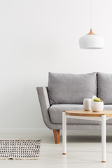 Lamp above wooden table near grey sofa in white living room interior with rug and plant. Real photo