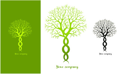 Design and modern logo tree, Yin yang or meditation business, graphic vector