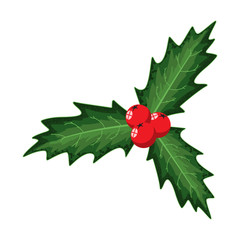 Christmas holly berry leaves. Vector cartoon holiday decoration element isolated on a white background.
