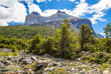 Torres del Paine, Chile - Laguna Torres, famous landmark of Patagonia, South America.