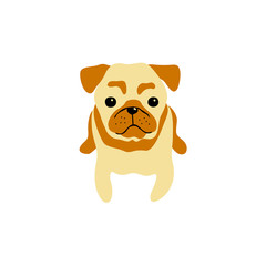 vector color cute pug dog pet animal  cartoon doodle pattern simple childish design for textile paper