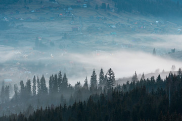 Tuinposter Ochtendstond met mist Early morning spring Carpathian mountains