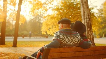 Senior couple enjoying sunset on the bench in the autumn park
