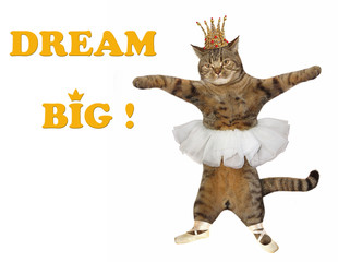The cat ballerina is dancing. Dream big! White background.