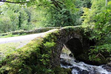Water under the stone bridge