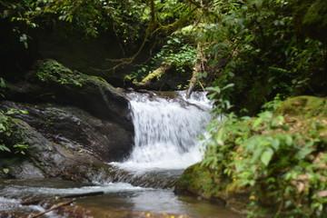 A natureza em suas diversas formas entre cachoeiras, cavernas e meio ambiente