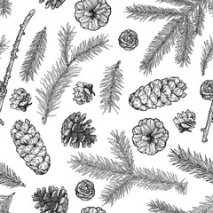 Fir tree branches and cones seamless pattern isolated on white