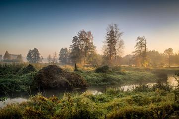 Rzeka Grabia w centralnej Polsce zaraz po wschodzie słońca otulona poranna mgłą