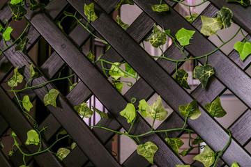 Home wooden decorative lattice fencing close-up