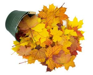 kleiner Eimer aus dem bunte, herbstliche Blätter fallen.
