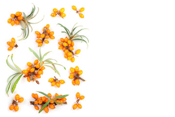 Sea buckthorn. Fresh ripe berry with leaves isolated on white background with copy space for your text. Top view. Flat lay pattern