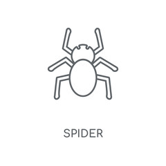 Spider linear icon. Spider concept stroke symbol design. Thin graphic elements vector illustration, outline pattern on a white background, eps 10.