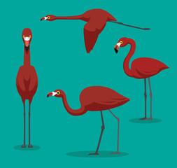 American Flamingo Cartoon Vector Illustration