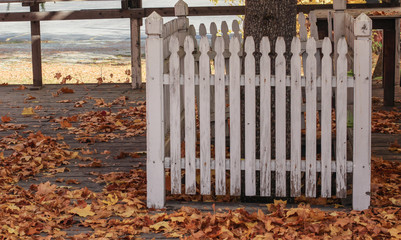 Falling Leaves White Picket Fence