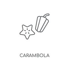 Carambola linear icon. Carambola concept stroke symbol design. Thin graphic elements vector illustration, outline pattern on a white background, eps 10.
