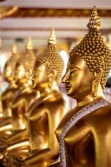 Buddha Gold ,Wat Suan Dok,Chiang Mai