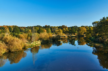 Trees on the banks of the Lusatian Neisse during autumn on the border between Poland and Germany..
