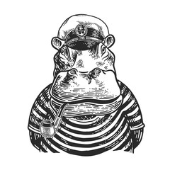 Hippopotamus, dressed in the form of a captain with a tobacco pipe. Vector vintage engraving illustration for logo, emblem, tattoo, poster, t-shirt, web and label. Hand drawn graphic style.