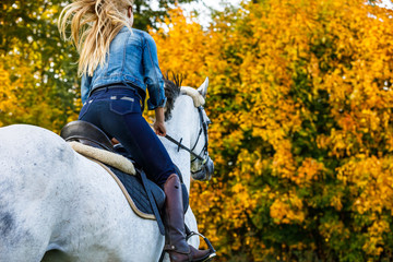 Photo sur cadre textile Equitation Woman riding a horse in park