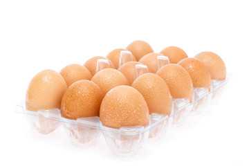 refrigerate eggs on white background
