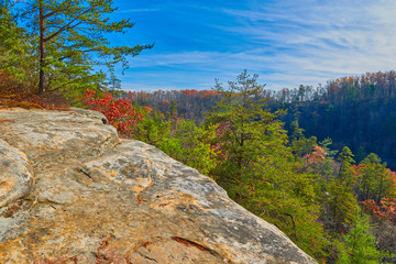 Red River Gorge, KY Wall mural