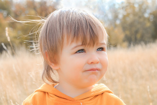 Close up portrait of cute little thoughtful baby boy gazing into the distance in autumn field. Colors of fall. Child melancholy