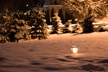 Swiece w zimowym ogrodzie