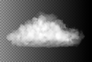 Vector realistic cloud on the transparent background.