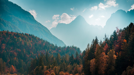 Beautiful mountain landscape with autumn forest. Alpine scenery - Julian Alps