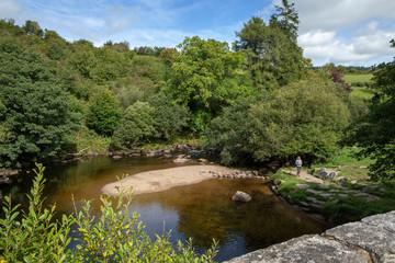 Dartmoor England Great Brittain
