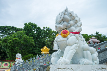 White stone Chinese guardian lion in Chinese temple, Kanchanaburi Thailand