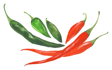 watercolor chilli peppers
