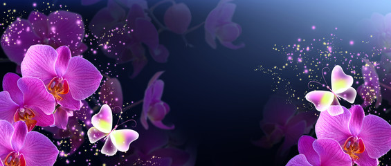 Butterflies with orchids and glowing stars