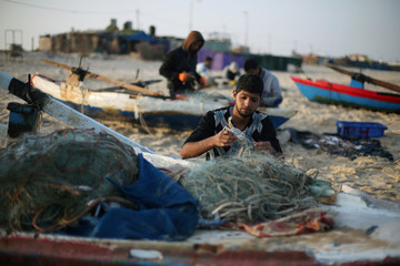 Palestinian fisherman takes out a crab from a net on a beach in the southern Gaza Strip