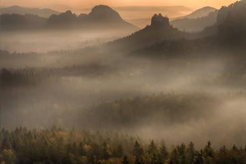 Obove the fog - Über dem Nebel