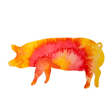 silhouette watercolor pig
