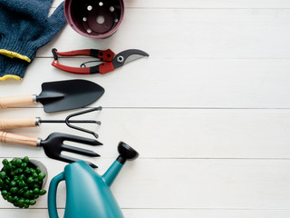 top view of garden concept with Gardening tools on white wooden background.