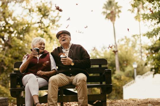 Elderly couple enjoying on picnic at park