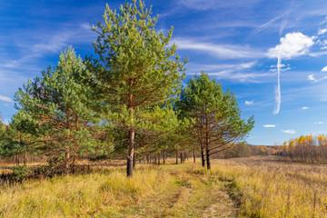 Ugra national Park. Reserve. Kaluga region. Russia