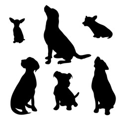 Vector silhouette of dog set on white background.