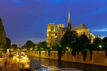 Fotomurales - Notre Dame de Paris at night