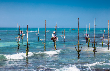 WELIGAMA SRI LANKA - JAN 6, 2017: Unidentified local fishermen are fishing in unique style on Jan 7, 2017. Sri Lanka. This type of fishing is traditional for Sri Lanka in Indian ocean.