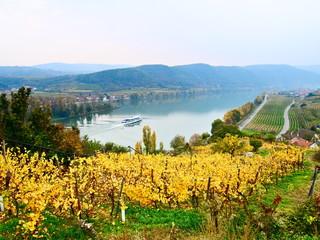 Wachau landscape with vineyard and ship