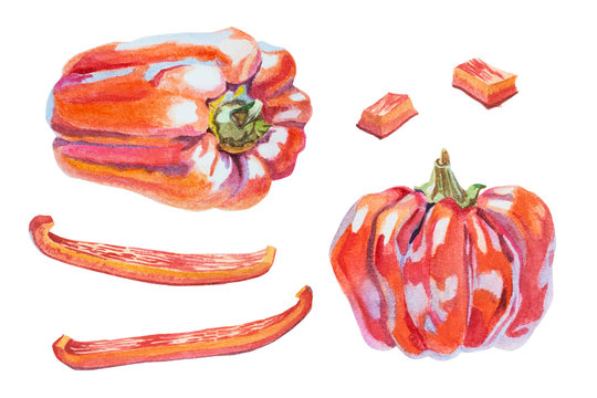 Watercolor illustration of red bell peppers and cutted pieces of paprika on white background