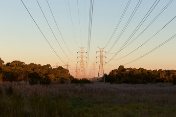 Power Lines Hanging Above Nature At Dusk