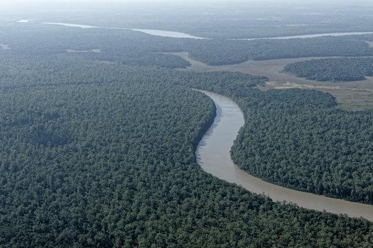 Vue aérienne forêt et rivière Montsinéry en Guyane française.