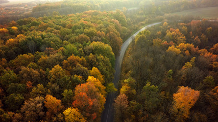 Foto op Plexiglas Luchtfoto Autumn forest drone aerial shot, Overhead view of foliage trees and road